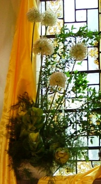white allium and yellow drape