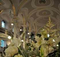 lilies and the ceiling